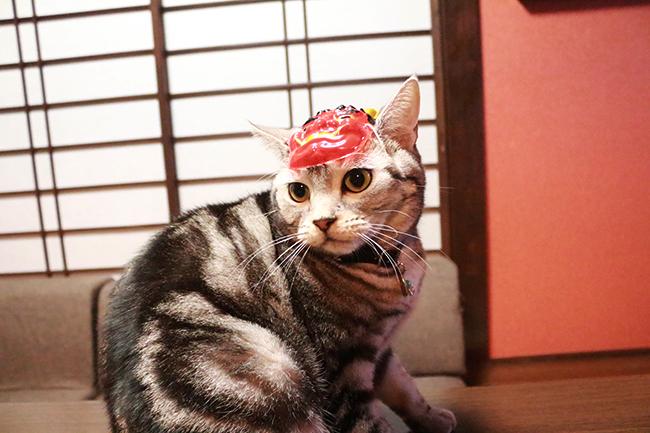 blog_000007110.jpg