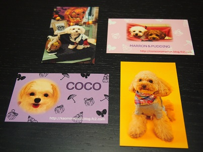 yopi card