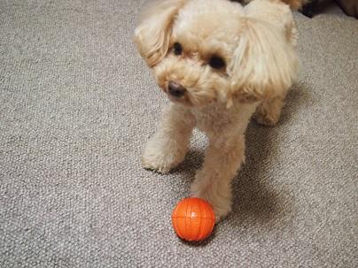 Junko-san no ball (5)