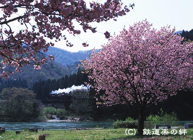 090419咲花