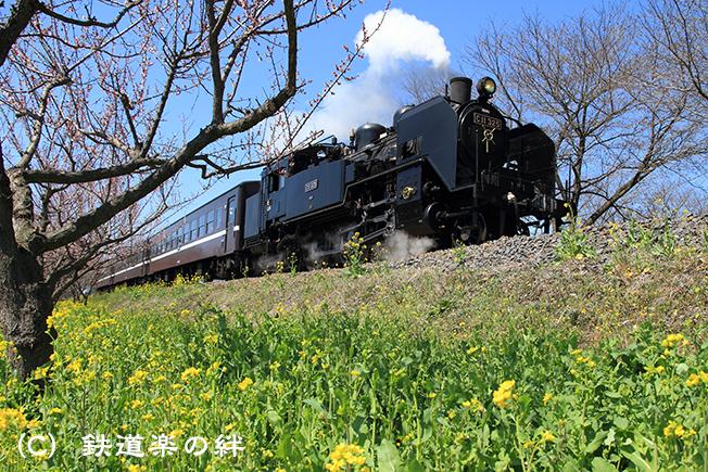 20100327北真岡