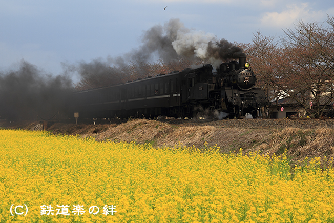 20100403北真岡