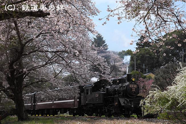 20100410久下田5D2