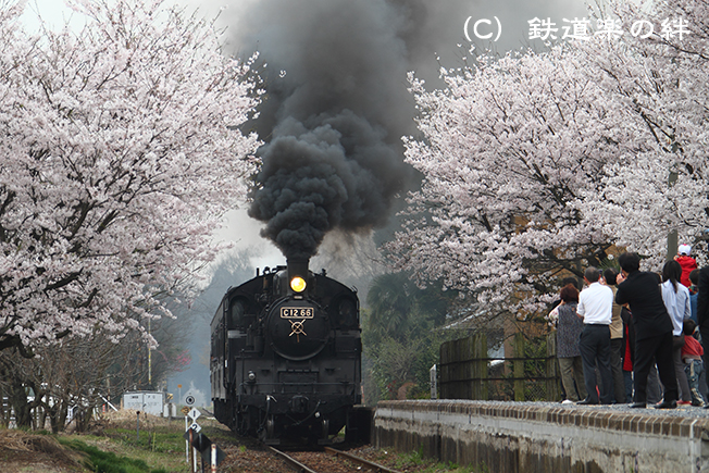 20100411寺内01