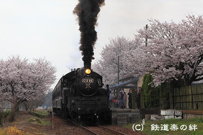 20100411寺内5D2
