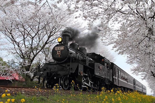 20100411北真岡