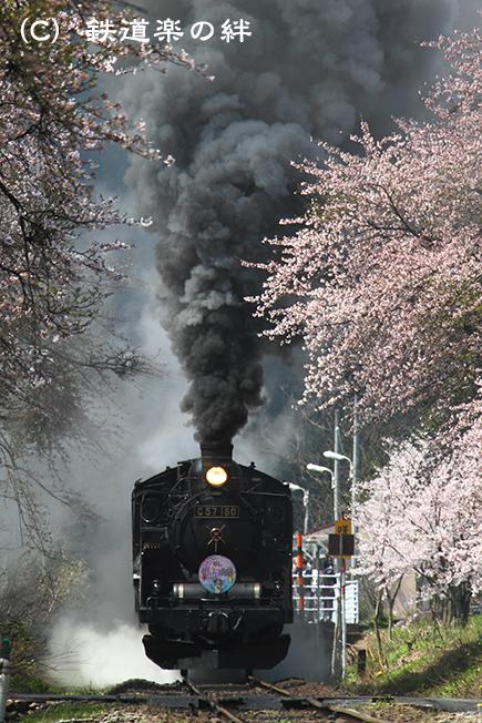 20100424咲花03