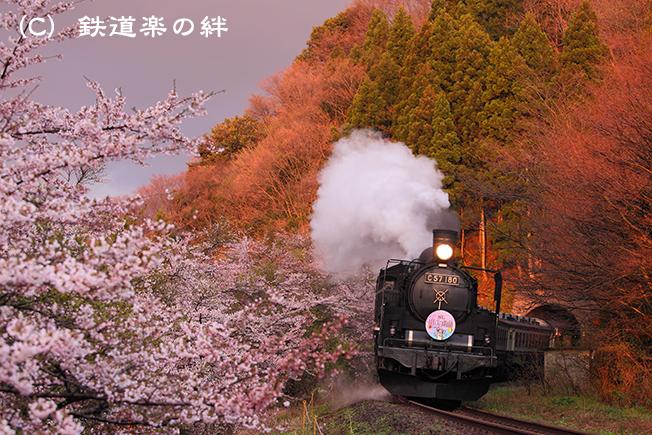 20100424咲花035D2