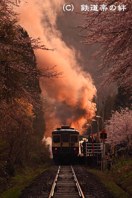 20100424咲花045D2