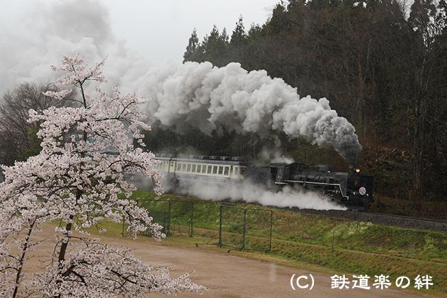 20100429野沢
