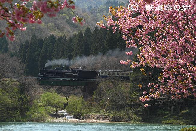 20100502咲花