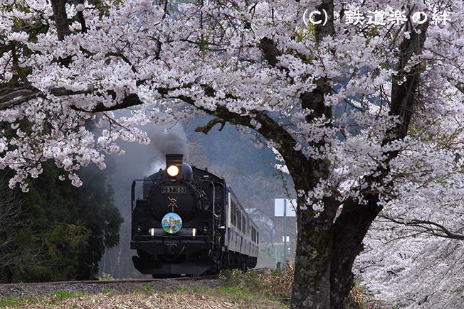 20100502上野尻5D2