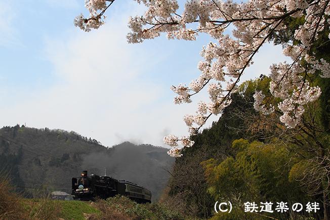 20100502津川01