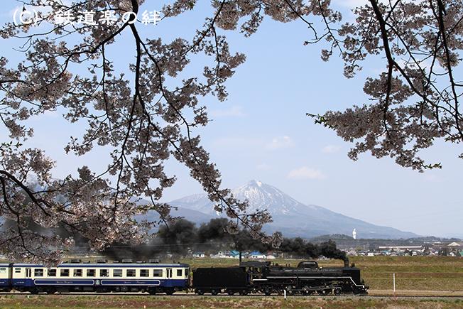 20100502堂島