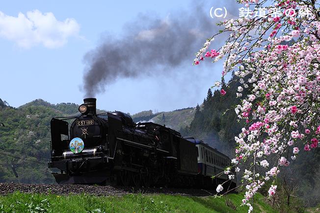 20100508津川5D2
