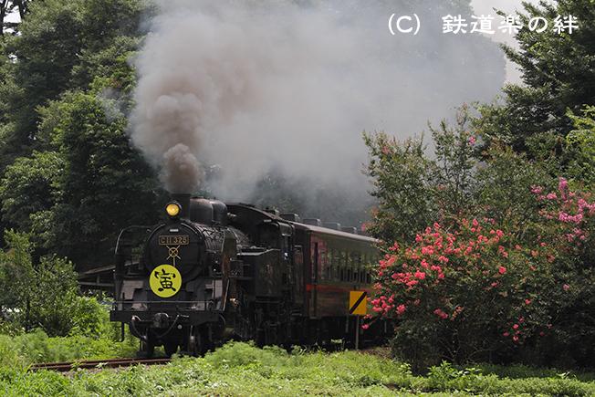 20100731多田羅