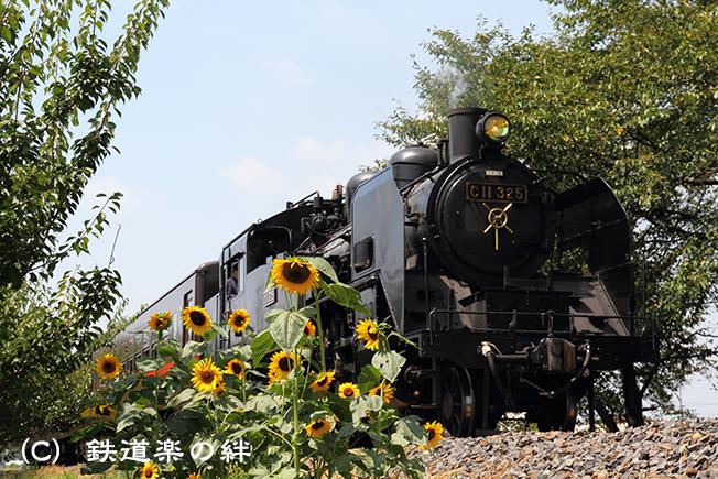 20100828北真岡