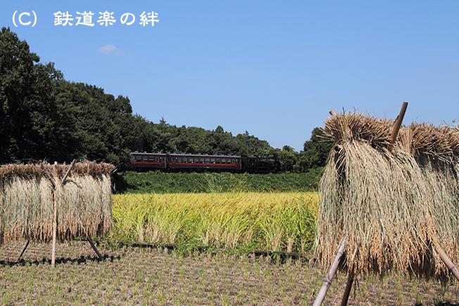 20100904折本