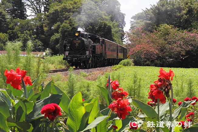 20100904多田羅