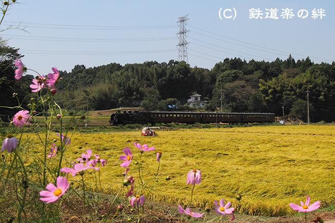 20100911笹原田
