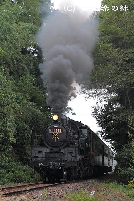 20100912多田羅
