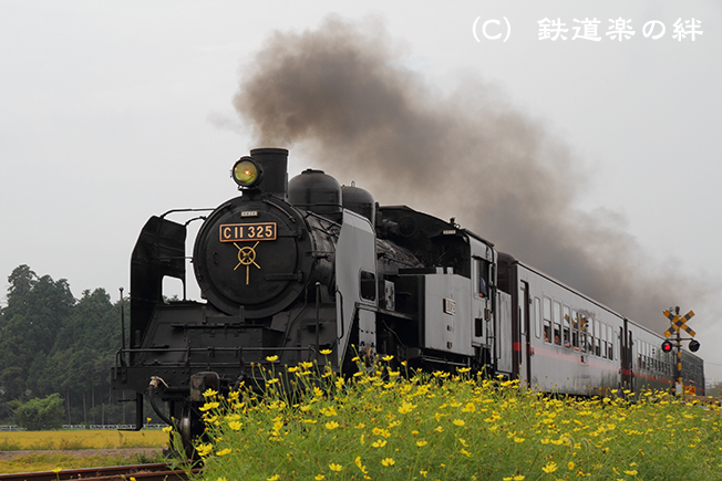 20100912北真岡