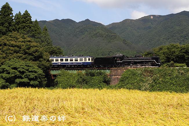 20100918咲花