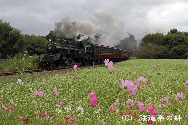 20100925多田羅02