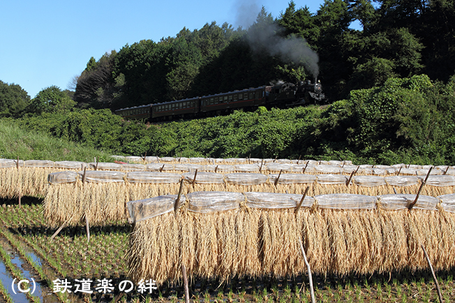 20100925天矢場01
