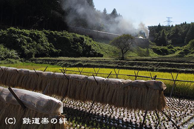 20100925天矢場03