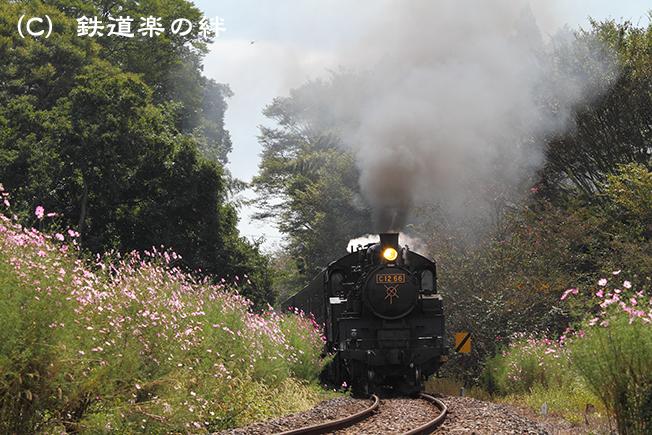 20101002多田羅02