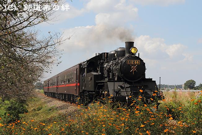 20101002北真岡