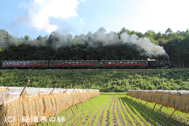 20101002天矢場02