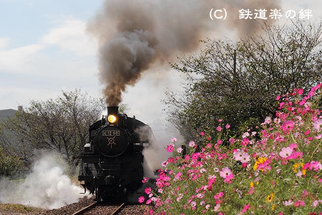 20101003寺内02