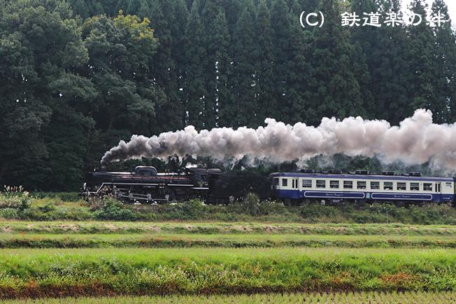 20101016野沢