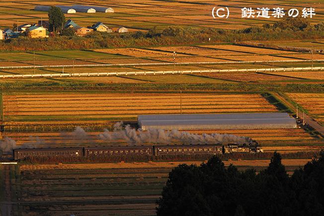 20101027根岸01