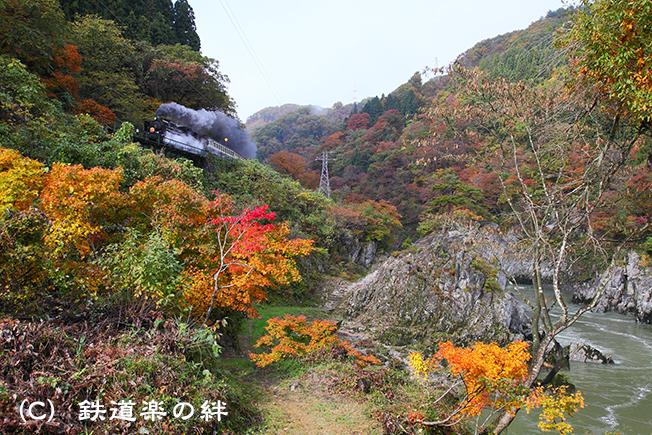 20101106上野尻5D2