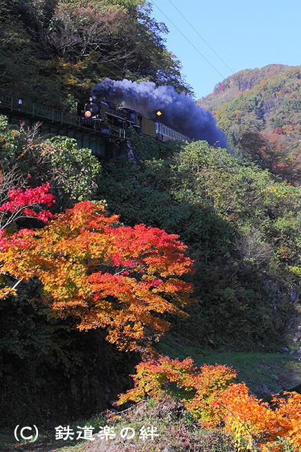 20101107上野尻015D2
