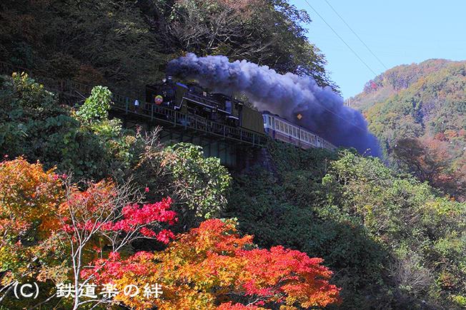 20101107上野尻025D2