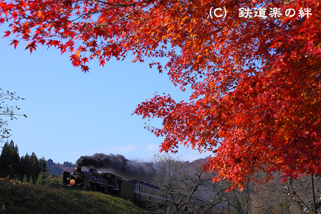 20101120上野尻015D2