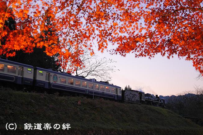 20101120上野尻025D2