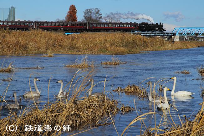 20101204益子