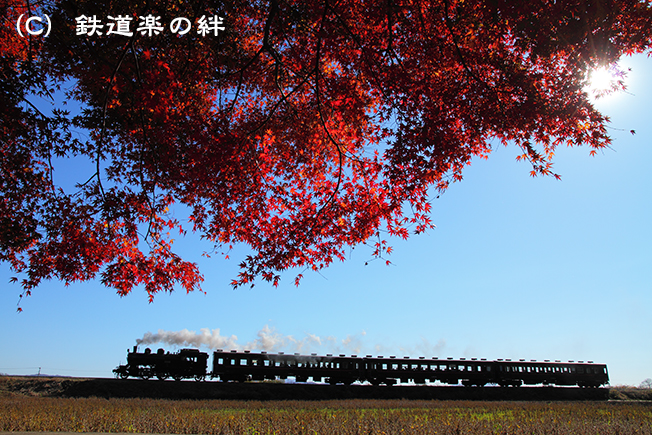 20101204真岡