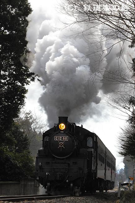 20110129多田羅02