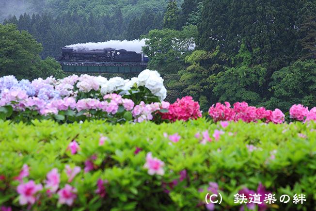 20110529咲花5D2