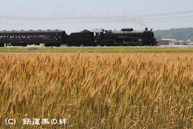 20110604八木原