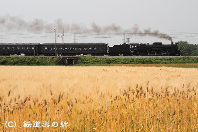 20110605八木原