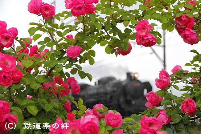 20110618後閑
