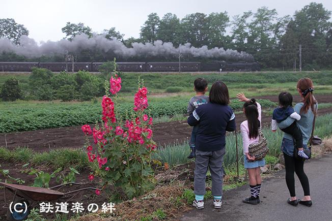 20110618八木原5D2