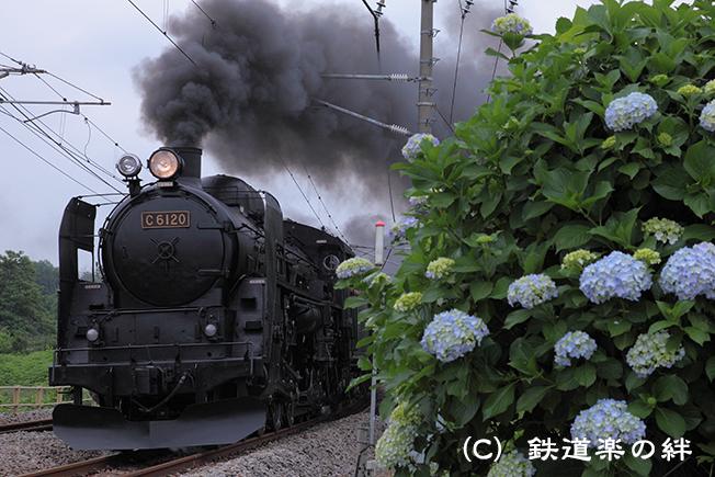 20110619八木原5D2